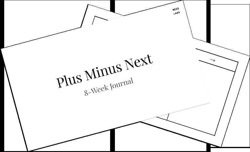 Plus Minus Next journaling - worksheet