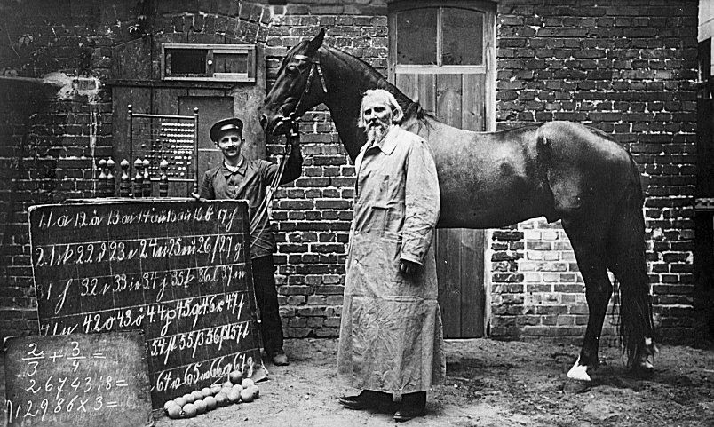 Clever Hans, the horse that could count