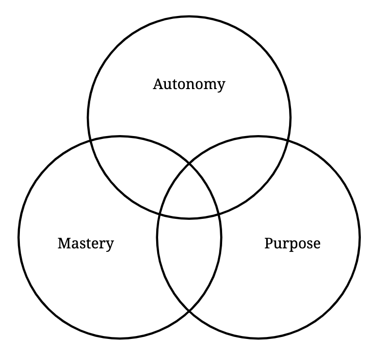 Motivation beyond money: autonomy, master, purpose