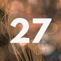 Curiosity Calendar #27